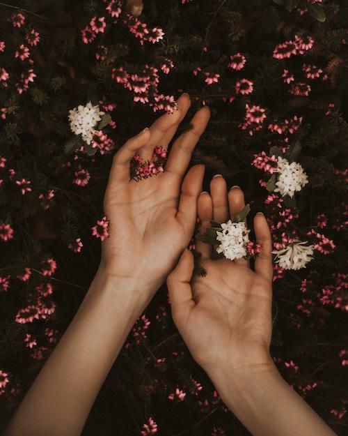 flower 2021